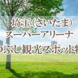 埼玉スーパーアリーナ周辺の暇つぶし観光スポット特集14選